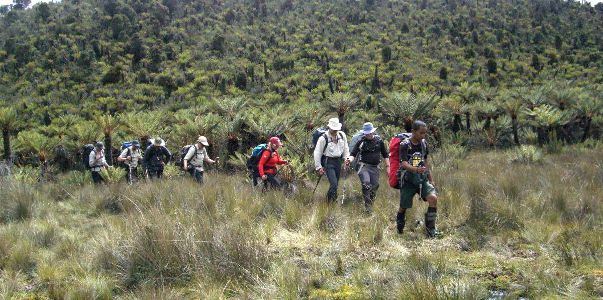 Carstensz_Trekking